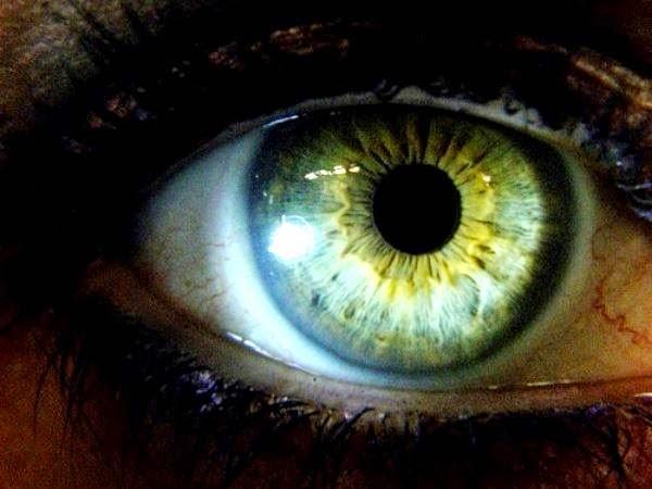celos, el monstruo de ojos verdes